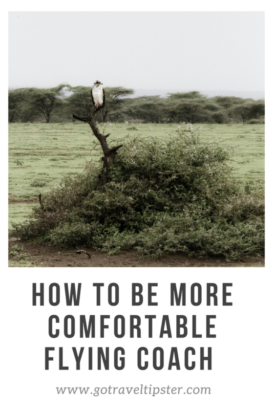 How to be comfortable flying coach - flying coach - comfortable travel - travel hacks - travel tips