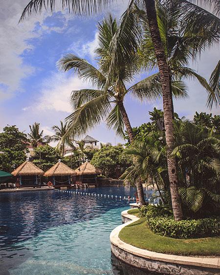 hard rock bali resorts pool palm trees