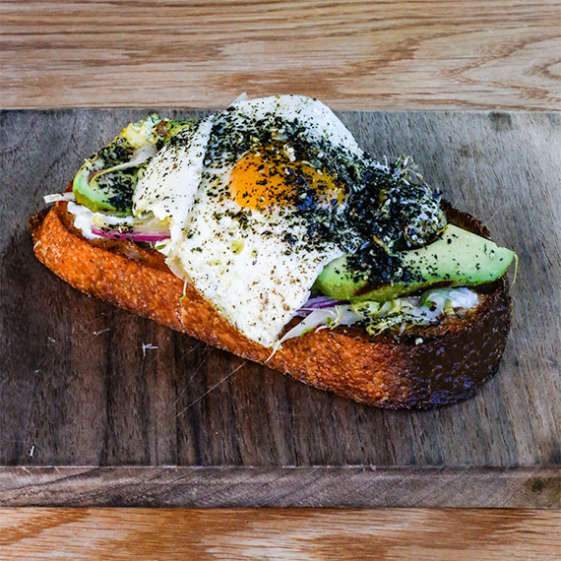getaways from nyc catskills avocado toast