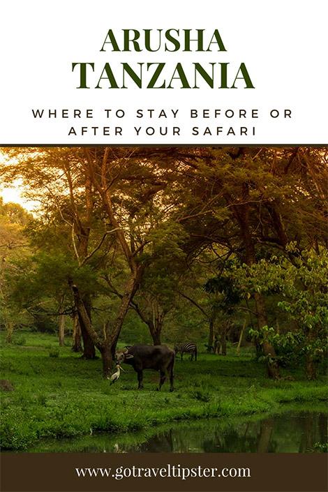arusha tanzania - where to stay in arusha - hotels in arusha - best hotel in arusha - best hotel in arusha tanzania