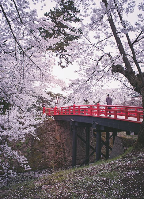 things to do in hirosaki - visit during cherry blossom season