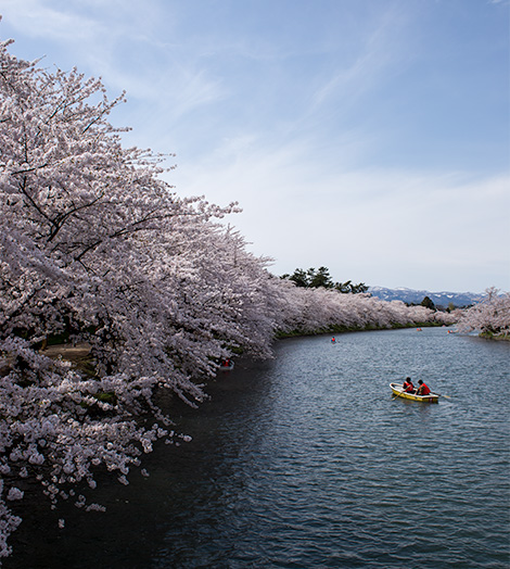 things to do in hirosaki