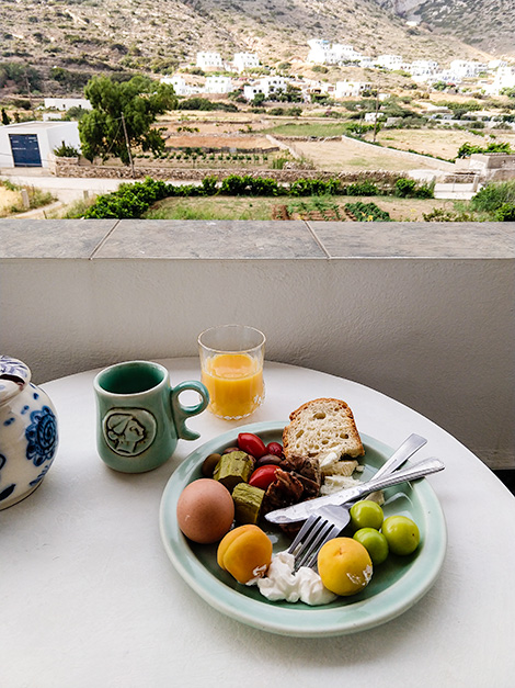 A farm fresh breakfast consisting of fruit, vegetable, eggs, bread, whipped creme and juice.  In the background, a view of the family farm.