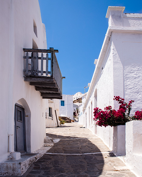 A quaint traditional Greek street lined with white homes.  Flowers appear on one side of the image and clear blue skies overhead.