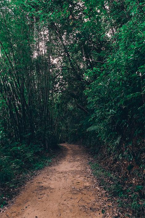 thailand itinerary, khao sok national park