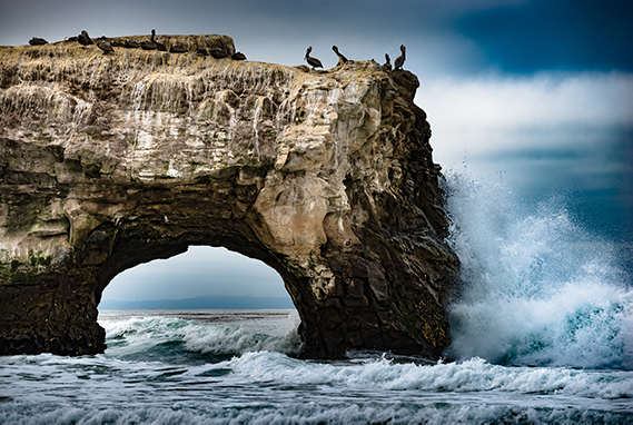 natural bridges state park in Santa Cruz.  A picture showing a huge boulder with a hole through it, waves underneath and birds resting on the boulder.