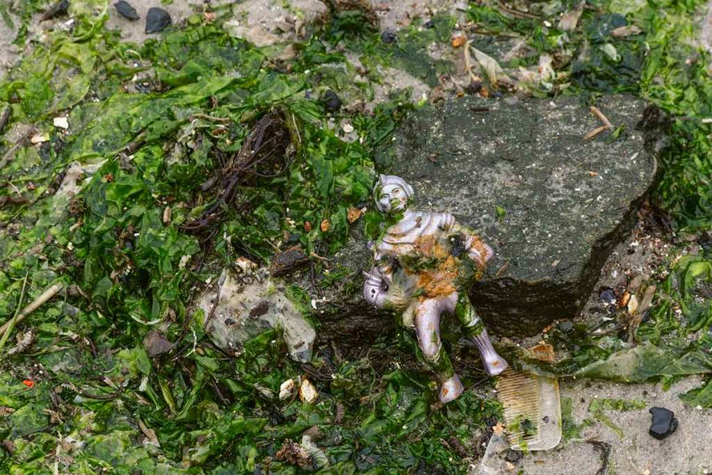 A small child's toy (likely an astronaut) lays inside a large accumulation of sea weed.  Behind the toy a piece of a comb sticks out.