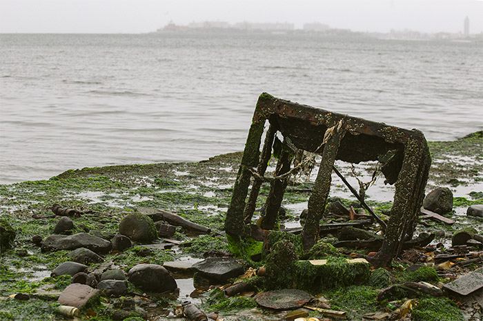 A rusted metal cage or another metal square object, surrounded by rocks and seaweed.  Water and a skyline can be seen in the distance.