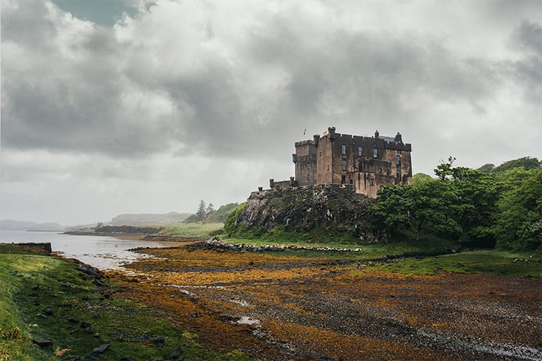 An ancient castle set among green trees, overcast sky in the background, yellow seaweed in the foreground, water in the distance