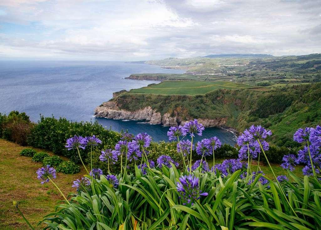 Flowers, ocean and grassy cliffs as seen in Miradouro De Santa Iria