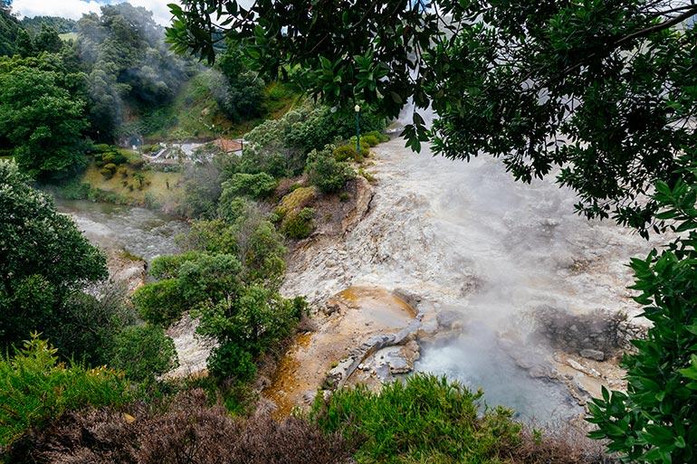 Water from the calderas rages and mixes with smoke, as seen through the trees.  Caldeiras Vulcanicas, Caldera in Furnas, Sao Miguel, Azores