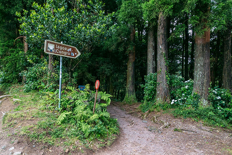 """Lagoa Do Congro, Sao Miguel, Azores, Portugal. A sign points to a hiking trail in the forest and says """"Lagoa Do Congro."""""""