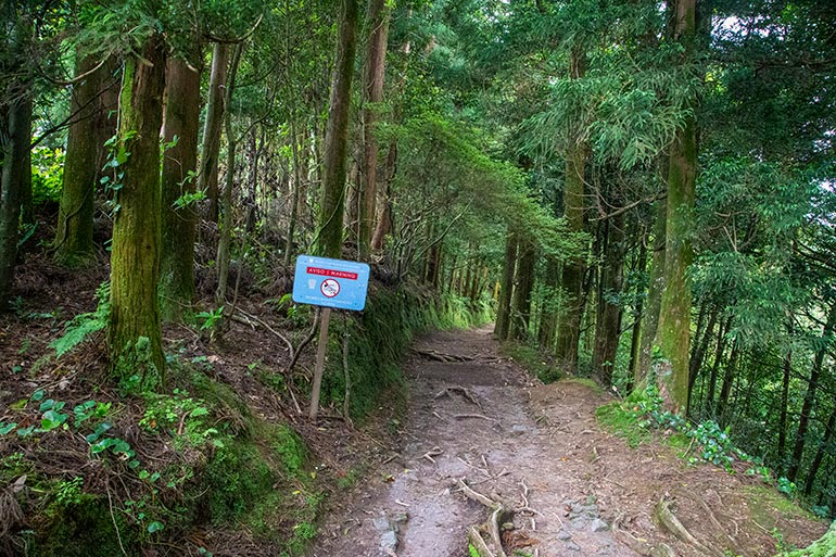 """A sign says """"No swimming"""" in Lagoa Do Congro, Sao Miguel, Azores, Portugal., on a hiking trail."""