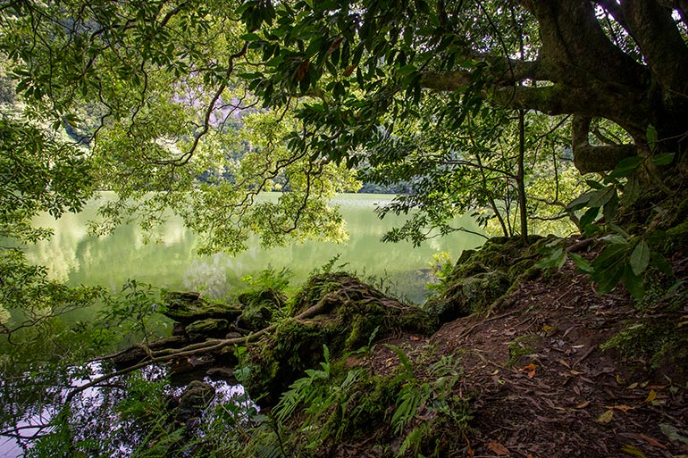Lagoa Do Congro, Sao Miguel, Azores, Portugal.  A peaceful green lake is surrounded by trees, shrubs and grass.