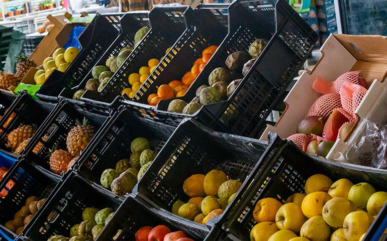 Fruit and vegetables displays in black baskets and boxes at Mercado Da Graca, Ponta Delgada