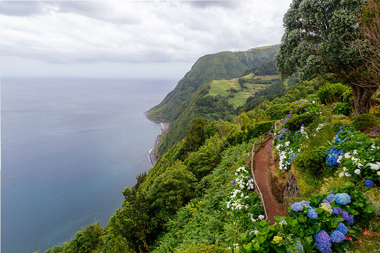 The view from Miradouro da Ponta do Sossego.  On the right side of the picture, a narrow path appears between flowers in a blooming garden, and cliffs in the background.  On the left side of the picture the sea as seen from above.