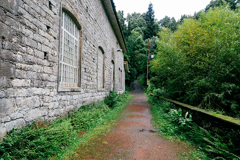 A narrow trail between a building and the forest.