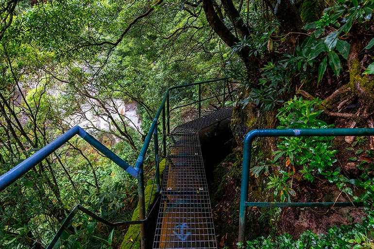 A metal walkway among the trees in Salto Do Cabrito