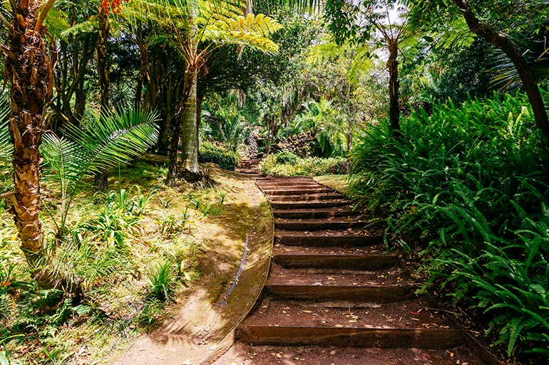 A shaded stairway path in Jardim Antonio Borges.