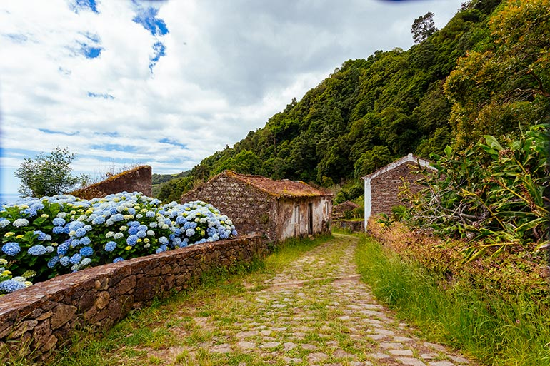 An abandoned road with flowers and homes in the village of Sanguinho