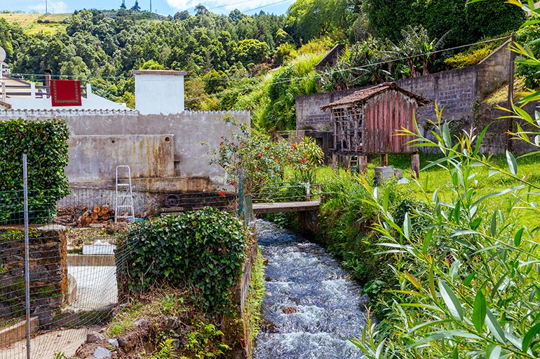 A small stream runs amid the grass in Sao Miguel Azores.  On both sides of the stream, homes and shacks.  In the foreground flowers and grass.