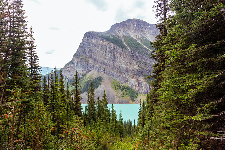 The first view of Lake Louise from the Big Beehive trail.