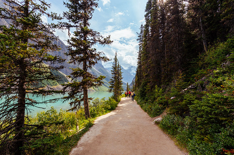 The easy and flat Lake Louise Lakeshore trail is a pleasure to walk.