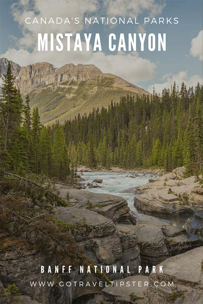 Mistaya Canyon with mountains and forest in the background, a pinterest friendly image.