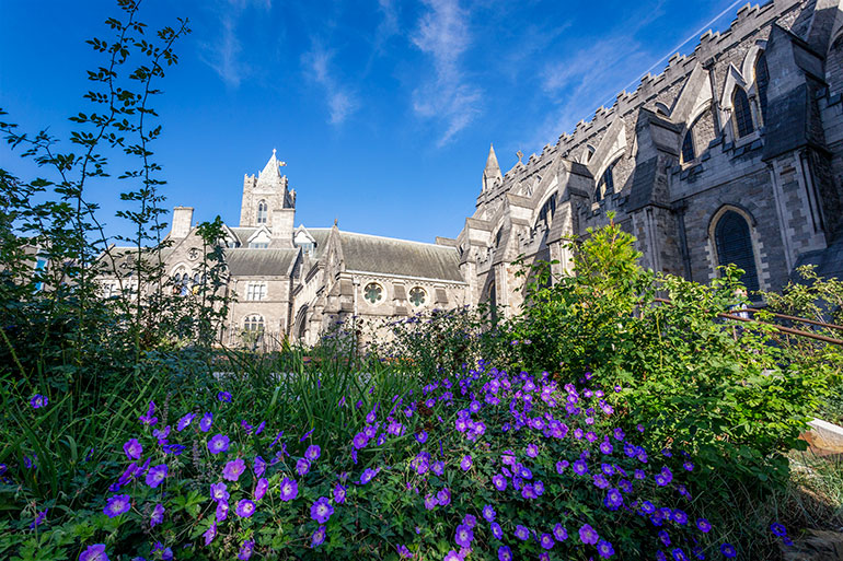 The outside view of Christ church Cathedral Dublin.