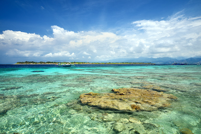 A reef next to Gili Meno island in Lombok.