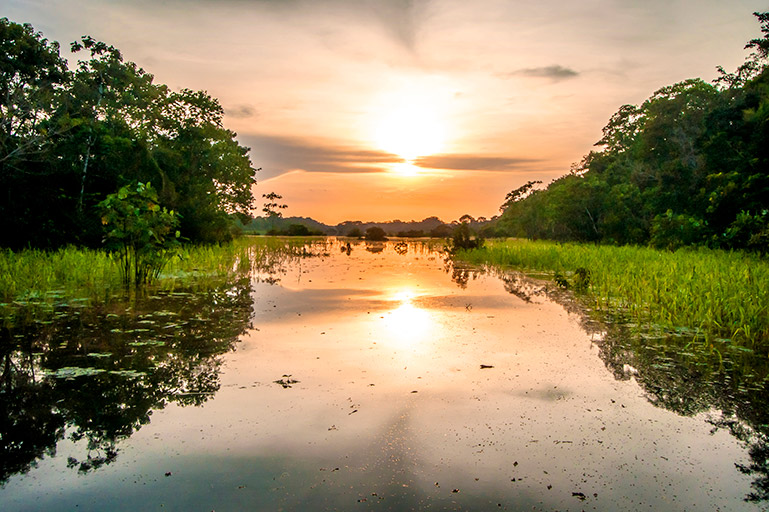 The sun rising over the river in the Amazon.