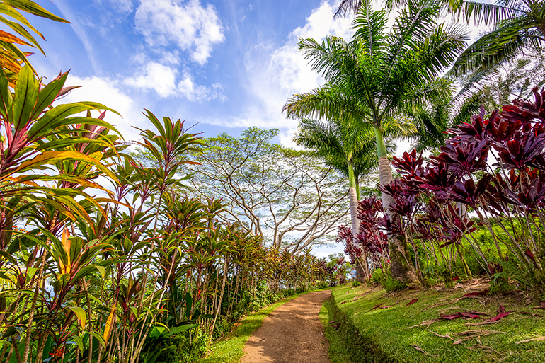 Garden of Eden Arboretum, Maui, Hawaii
