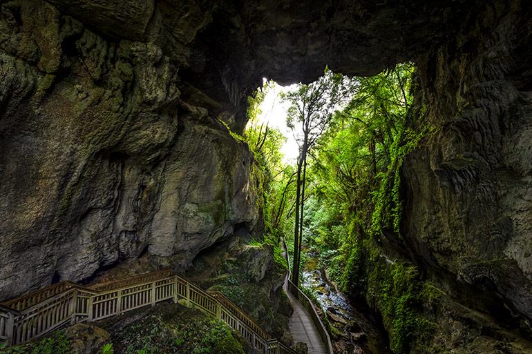 Mangapohue Natural Bridge, New Zealand.